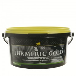 Lincoln - TURMERIC GOLD